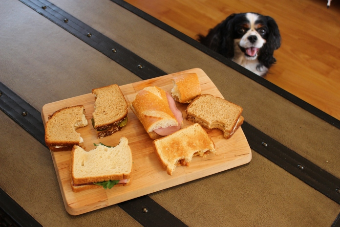Because it is sandwich month, son.