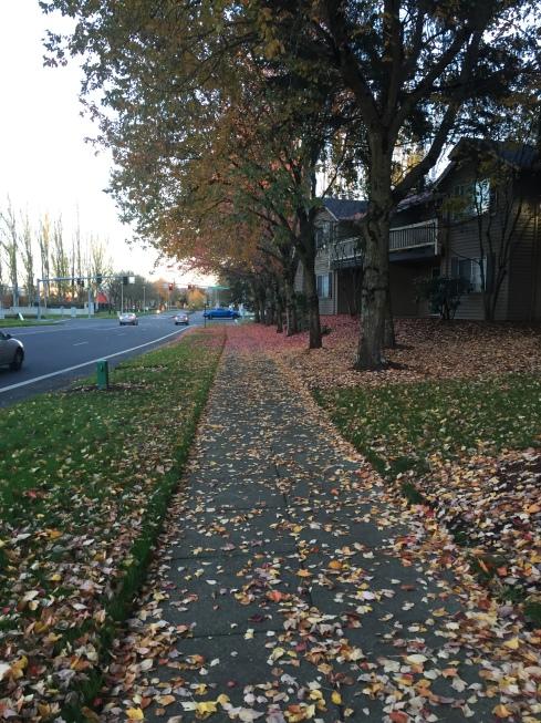 Leaves, etc.